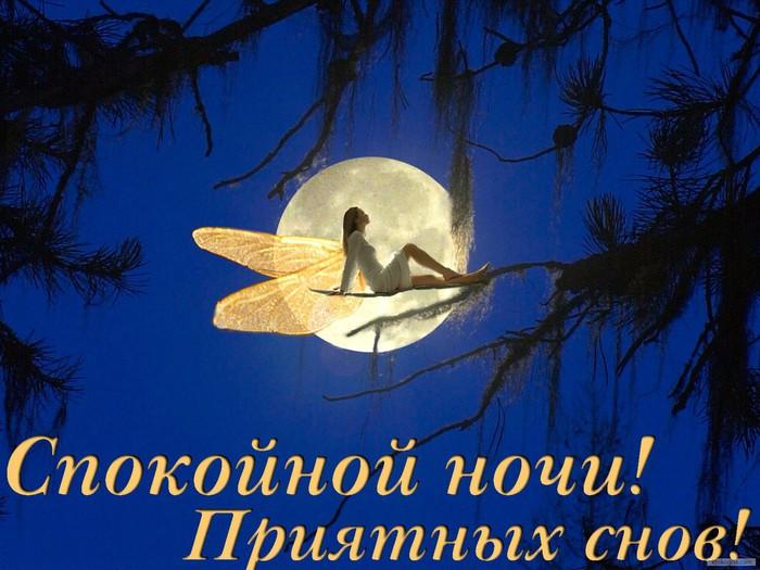 http://img0.liveinternet.ru/images/attach/c/11/128/773/128773826_spokoinoynochi32.jpg