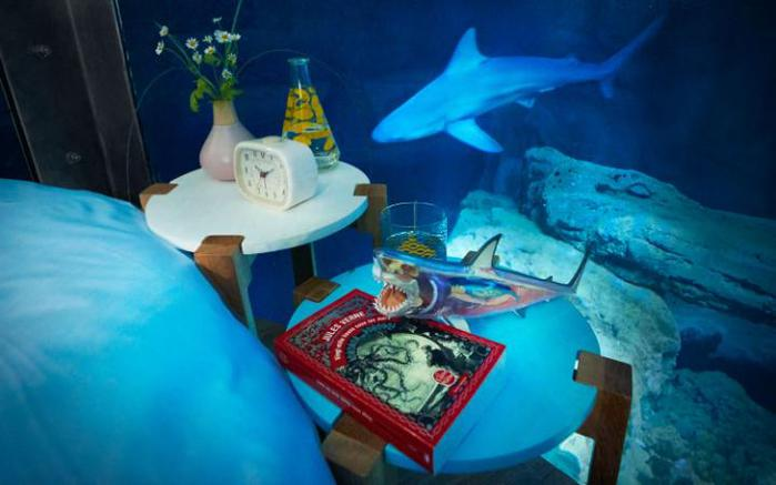 airbnb-underwater-bedroom-shark-aquarium-paris2-large (700x437, 36Kb)