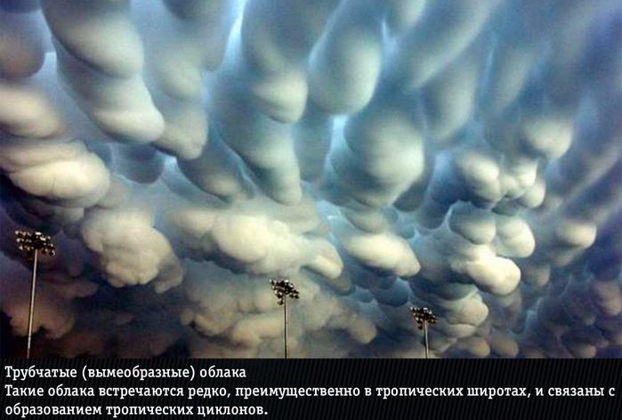 Удивительные явления природы (700x472, 304Kb)