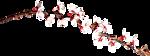 0_aba61_727dbb76_S.jpg (150x56, 11Kb)