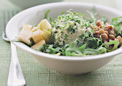 s zelenym salatommm (250x175, 74 Kb)