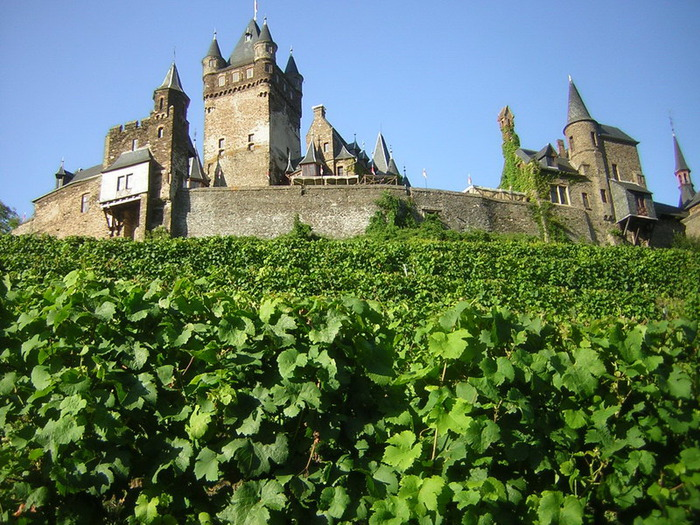 Замок Кохем под Райхсбургом. Германия. 56607