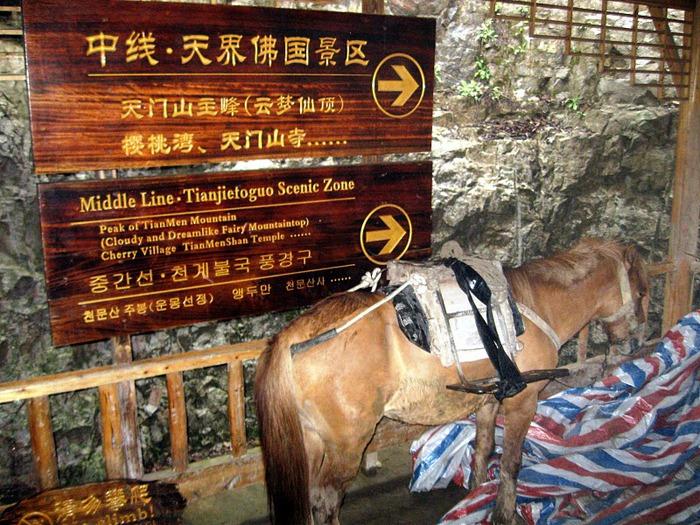 Национальный парк Чжанцзяцзе 21349