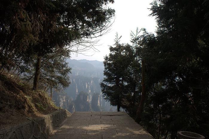 Национальный парк Чжанцзяцзе 16337