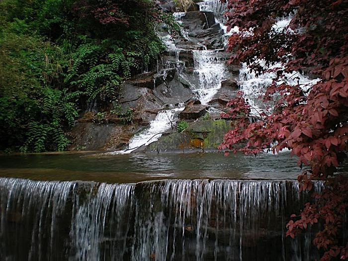 Национальный парк Чжанцзяцзе 81063