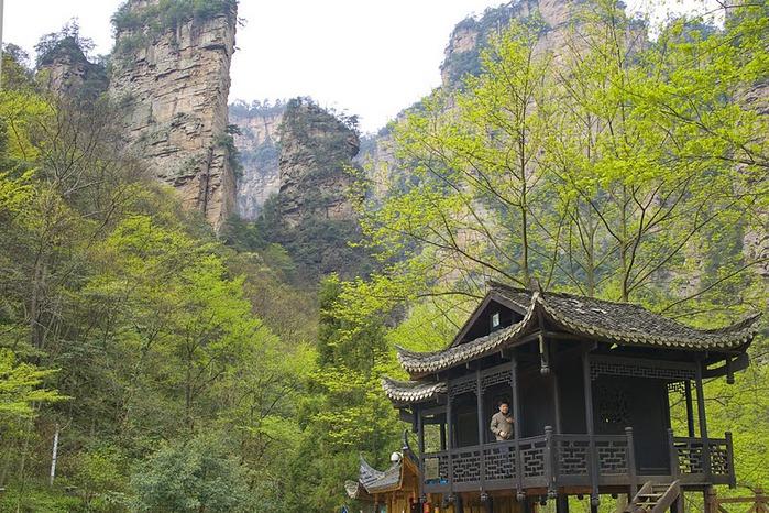 Национальный парк Чжанцзяцзе 22805