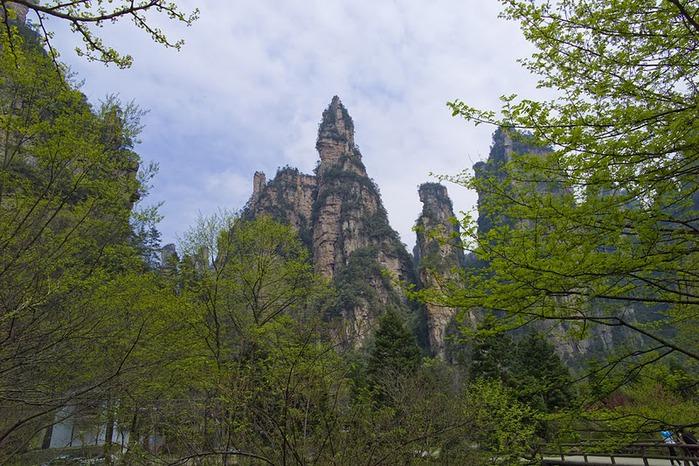 Национальный парк Чжанцзяцзе 99659