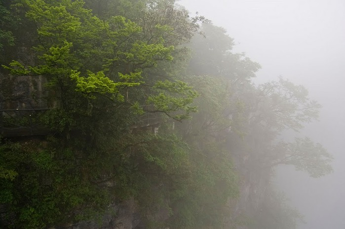 Национальный парк Чжанцзяцзе 92040