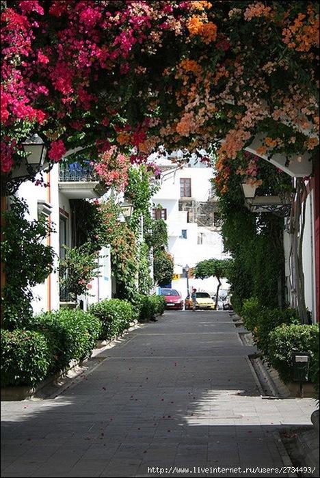 Пуэрто-де-Моган - стопроцентный земной рай 5