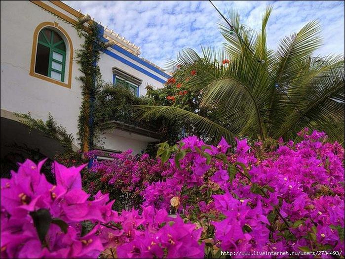 Пуэрто-де-Моган - стопроцентный земной рай 11