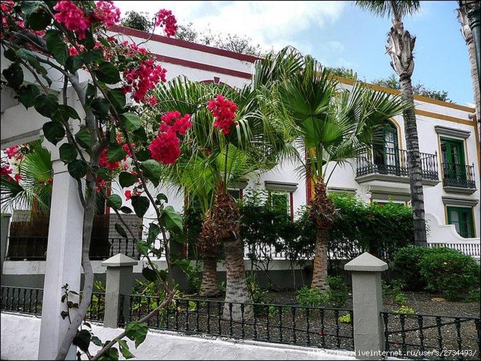 Пуэрто-де-Моган - стопроцентный земной рай 21