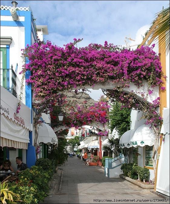 Пуэрто-де-Моган - стопроцентный земной рай 30
