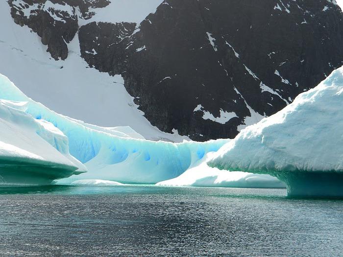 Антарктида 56117