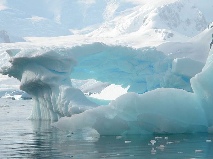 Антарктида 20378
