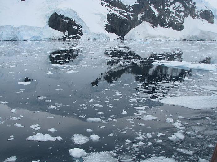 Антарктида 50566