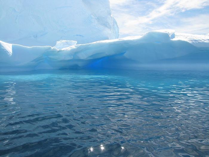 Антарктида 75139