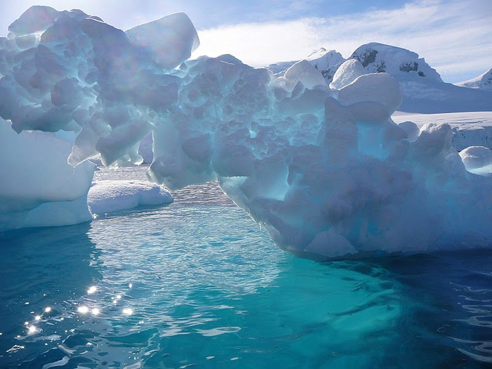Антарктида 24282