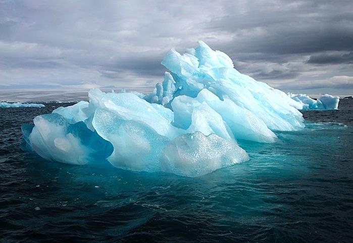 Антарктида 41109