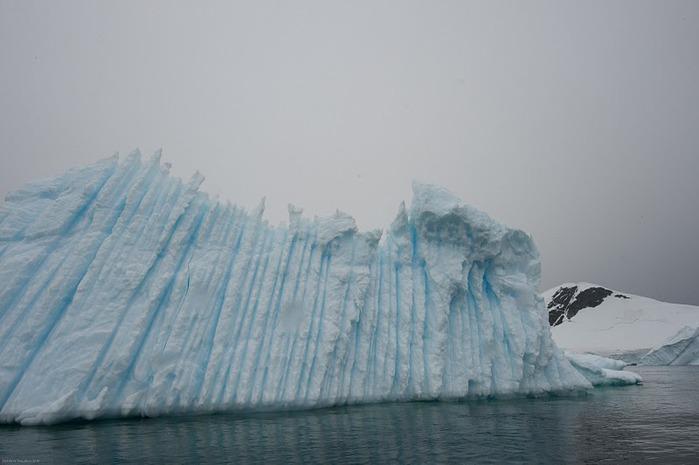 Антарктида 21110