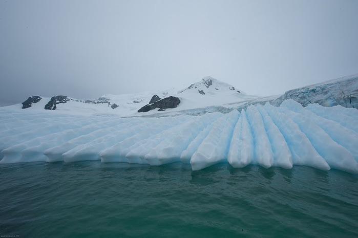 Антарктида 54724