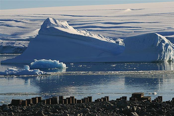 Антарктида 79862