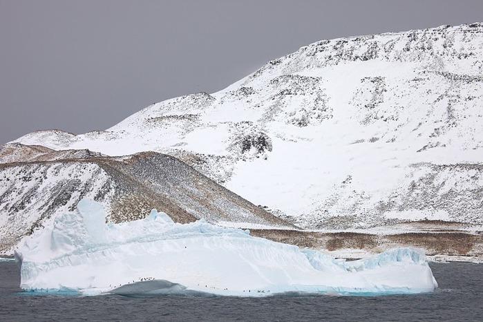Антарктида 25154