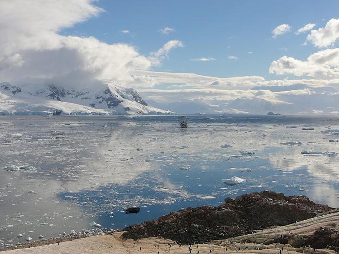 Антарктида 93585