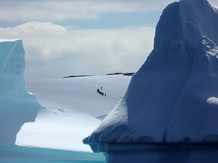 Антарктида 29763