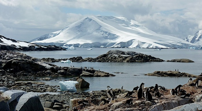 Антарктида 97844