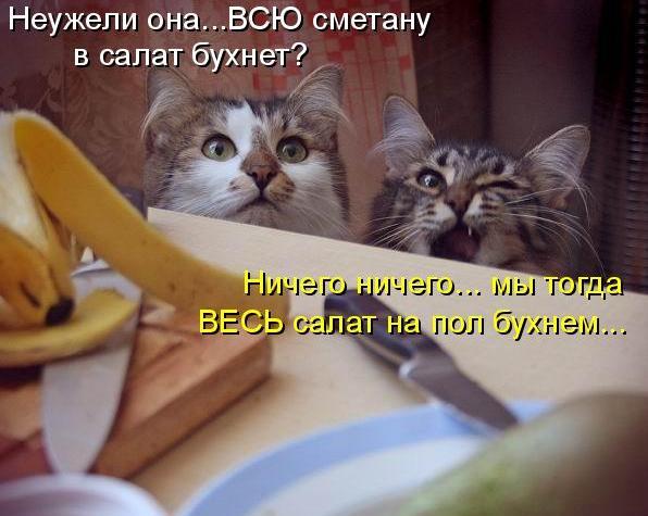 http://img0.liveinternet.ru/images/attach/c/2//64/337/64337824_1285144701_yayaya.jpg