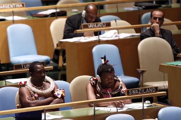 представители свазиленда на заседании в оон