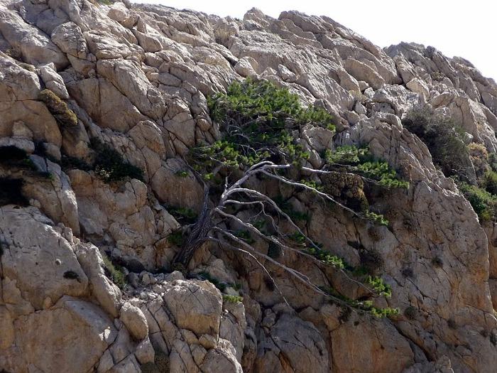 Остров Карпатос - высокие горы, традиционные поселки, пляжи на юге... 32623