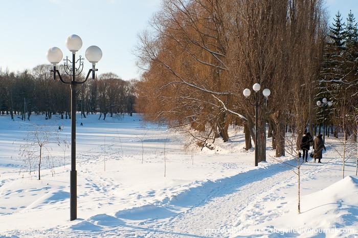 Картинки белгорода зимой