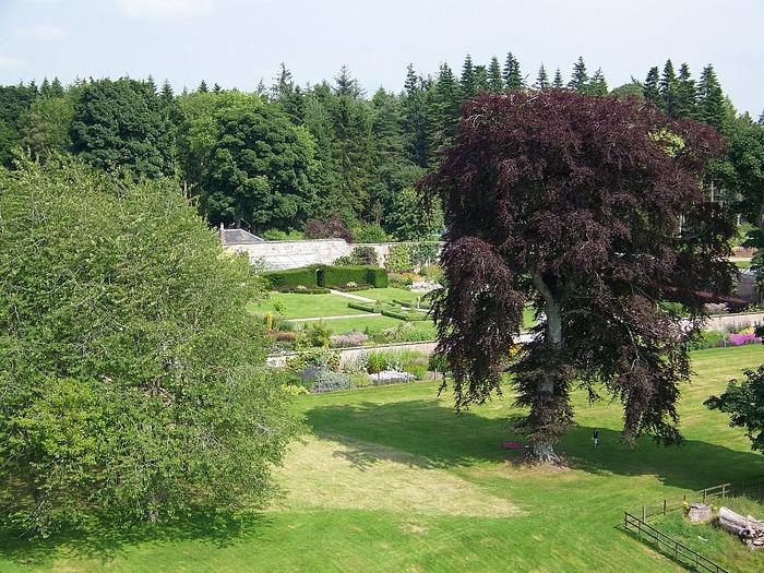 Замок Фрейзер (Castle Fraser) 85026