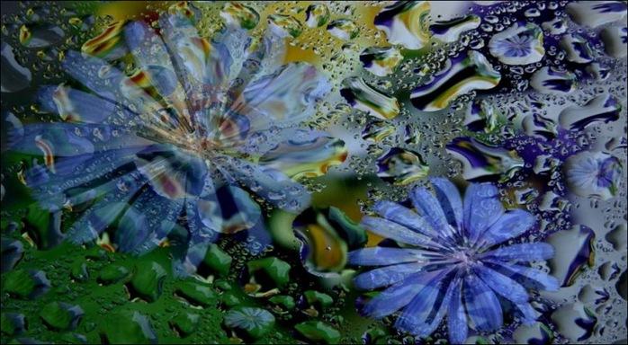 Красота нашей планеты - 60 отличных фото 15