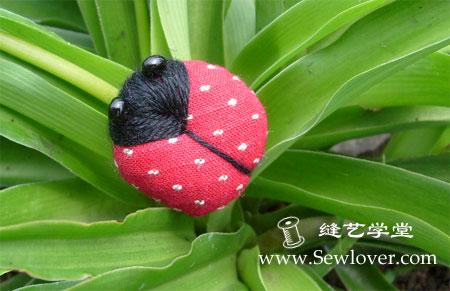 1285672122_ladybug (450x291, 37 Kb)