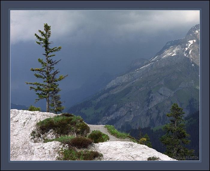 Выше гор могут быть выше только горы 14