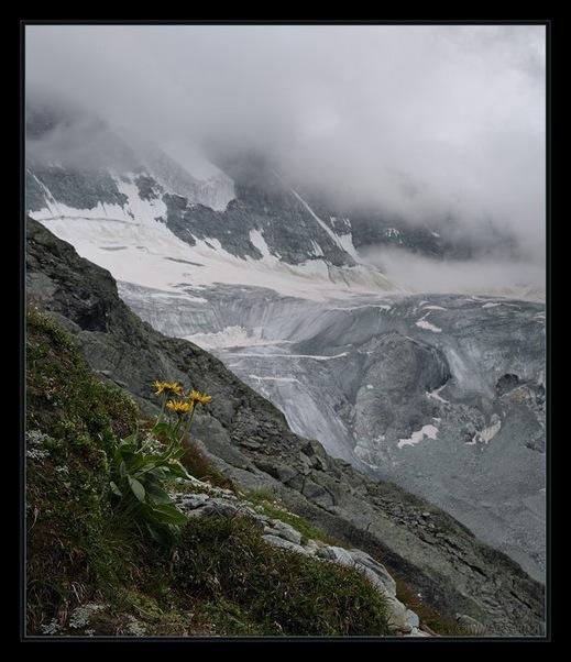 Выше гор могут быть выше только горы 10