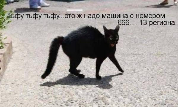 (600x361, 57Kb)