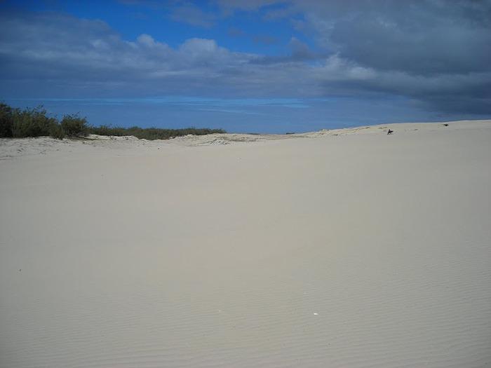 Oстров Фрейзер — объект всемирного достояния человечества и самый большой песчаный остров в мире. 13867