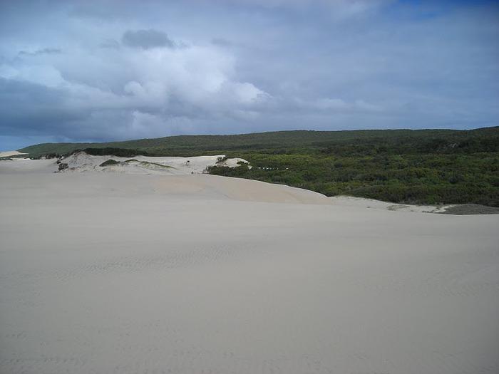 Oстров Фрейзер — объект всемирного достояния человечества и самый большой песчаный остров в мире. 89125