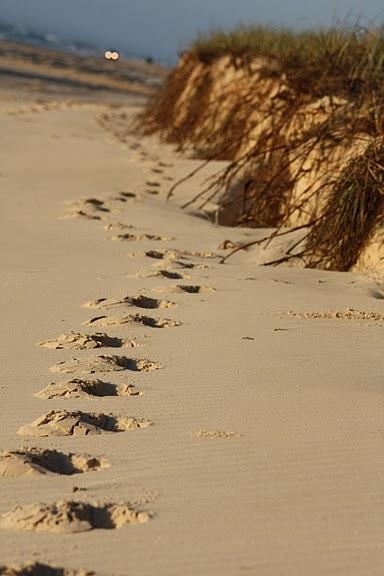 Oстров Фрейзер — объект всемирного достояния человечества и самый большой песчаный остров в мире. 63485