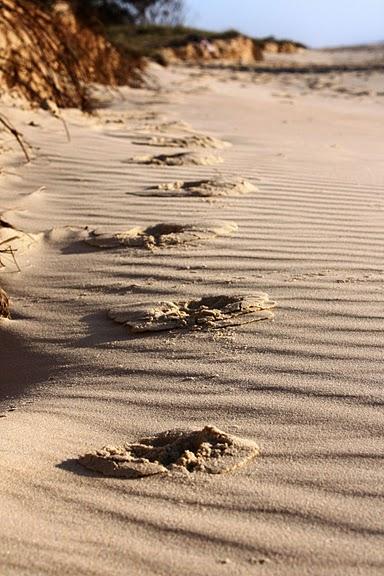 Oстров Фрейзер — объект всемирного достояния человечества и самый большой песчаный остров в мире. 79823