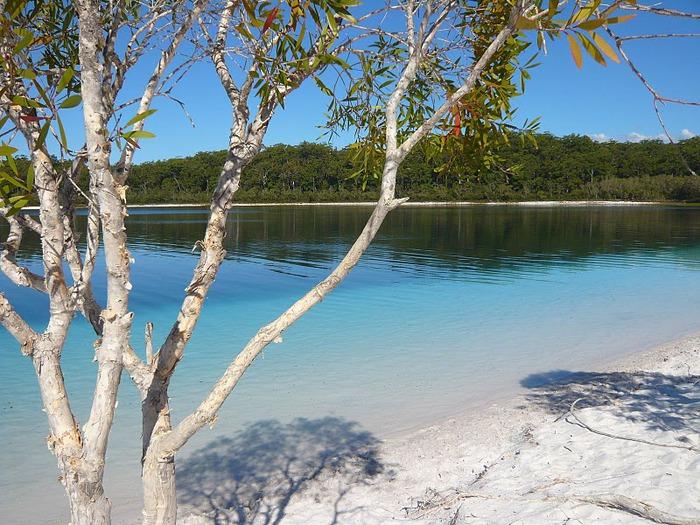 Oстров Фрейзер — объект всемирного достояния человечества и самый большой песчаный остров в мире. 95270