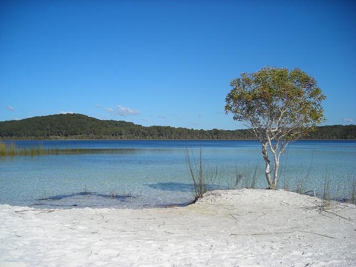 Oстров Фрейзер — объект всемирного достояния человечества и самый большой песчаный остров в мире. 84729