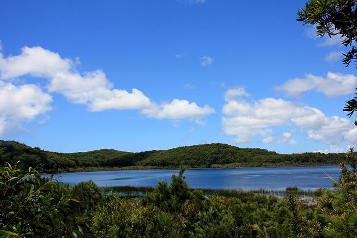 Oстров Фрейзер — объект всемирного достояния человечества и самый большой песчаный остров в мире. 49584