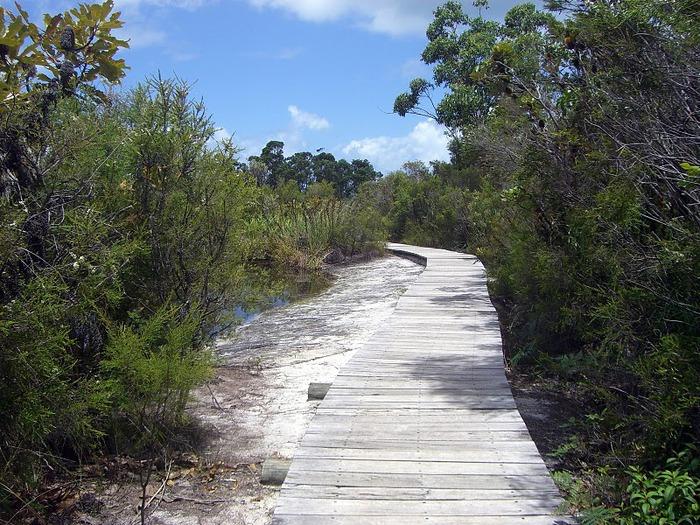 Oстров Фрейзер — объект всемирного достояния человечества и самый большой песчаный остров в мире. 97965