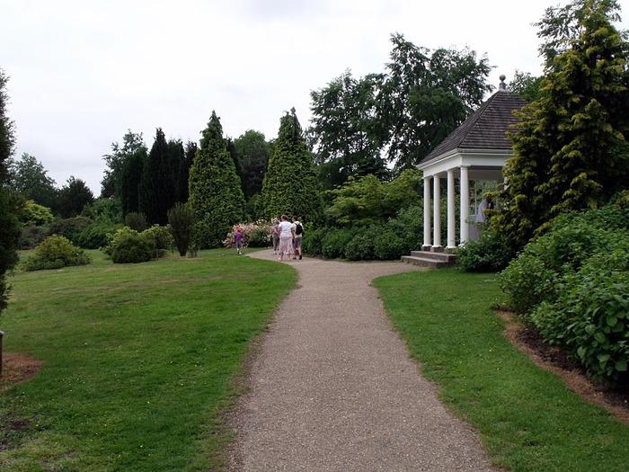 Nymans Gardens 41516