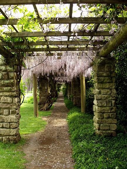 Nymans Gardens 84443