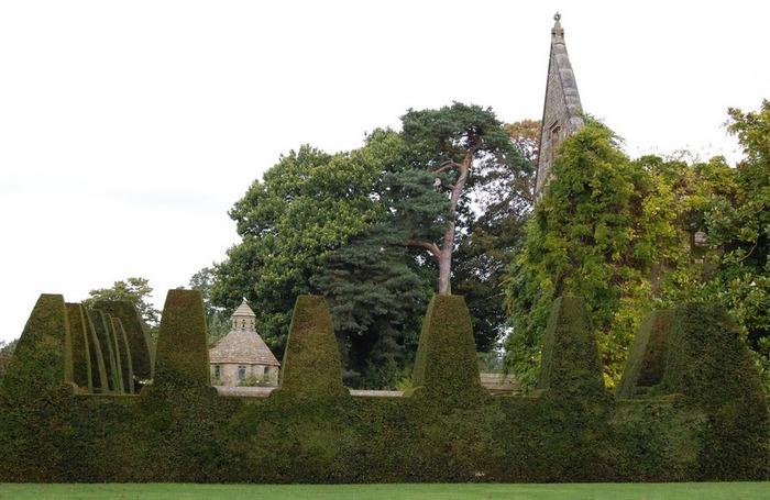Nymans Gardens 25381
